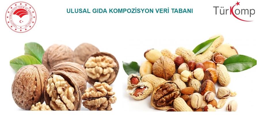 Türkomp